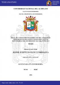 JENNIE JUDITH MAMANI CCORIMANYA