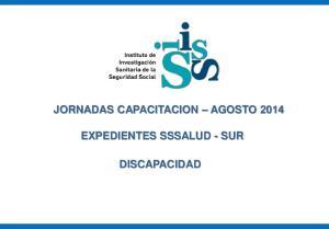 JORNADAS CAPACITACION AGOSTO 2014 EXPEDIENTES SSSALUD - SUR DISCAPACIDAD