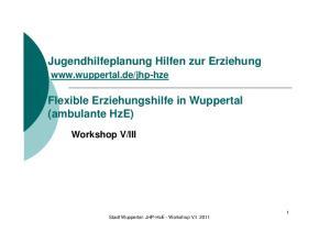 Jugendhilfeplanung Hilfen zur Erziehung. Flexible Erziehungshilfe in Wuppertal (ambulante HzE)