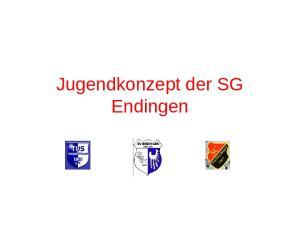 Jugendkonzept der SG Endingen