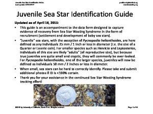 Juvenile Sea Star Identification Guide