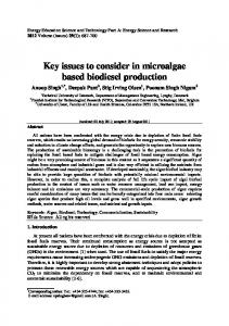 Key issues to consider in microalgae based biodiesel production