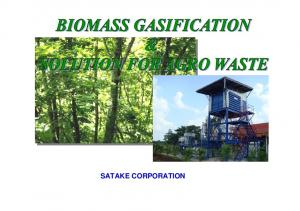 Kind of Biomass for Gasification
