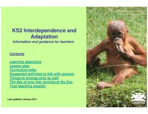 KS2 Interdependence and Adaptation Information and guidance for teachers