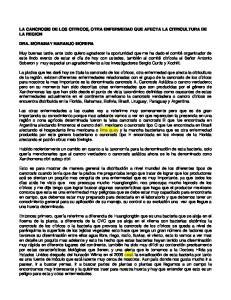 LA CANCROSIS DE LOS CITRICOS, OTRA ENFERMEDAD QUE AFECTA LA CITRICULTURA DE LA REGION