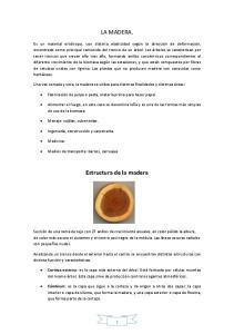 LA MADERA. Estructura de la madera