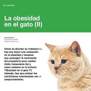 La obesidad en el gato (II)