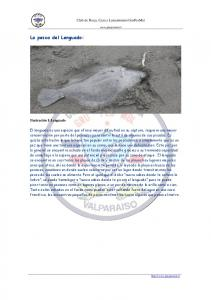 La pesca del Lenguado:
