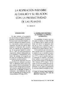 LA RESPIRACION INSENSIBLE AL CIANURO Y SU RELACION CON LA PRODUCTIVIDAD DE LAS PLANTAS