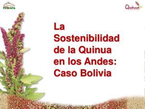 La Sostenibilidad de la Quinua en los Andes: Caso Bolivia