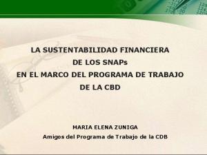 LA SUSTENTABILIDAD FINANCIERA DE LOS SNAPs EN EL MARCO DEL PROGRAMA DE TRABAJO DE LA CBD. MARIA ELENA ZUNIGA Amigos del Programa de Trabajo de la CDB
