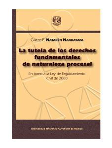 LA TUTELA DE LOS DERECHOS FUNDAMENTALES DE NATURALEZA PROCESAL En torno a la Ley de Enjuiciamiento Civil de 2000