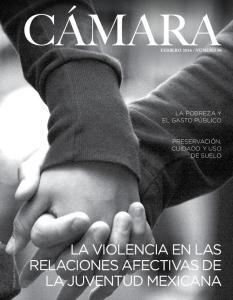 LA VIOLENCIA EN LAS RELACIONES AFECTIVAS DE LA JUVENTUD MEXICANA