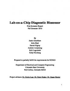 Lab-on-a-Chip Diagnostic Biosensor