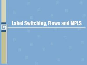 Label Switching, Flows and MPLS