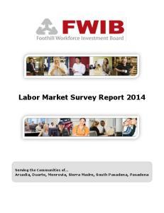 Labor Market Survey Report 2014