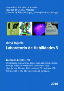 Laboratorio de Habilidades 5