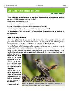 Las Aves Amenazadas de Chile