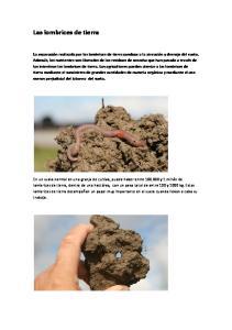 Las lombrices de tierra