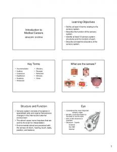 Learning Objectives. Introduction to Medical Careers. Key Terms. What are the senses? Structure and Function. Eye