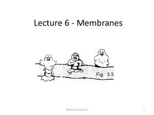 Lecture 6 - Membranes