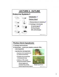 LECTURE 8 - OUTLINE. Introduction. Pituitary Gland