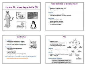 Lecture P2: Interacting with the OS