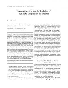 Legume Sanctions and the Evolution of Symbiotic Cooperation by Rhizobia