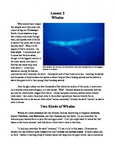 Lesson 2 Whales. Two Kinds of Whales
