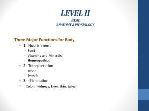 LEVEL II BASIC ANATOMY & PHYSIOLOGY