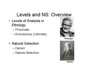 Levels and NS: Overview