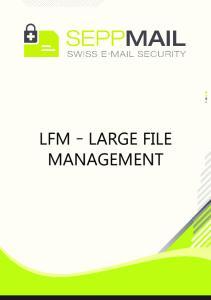 LFM Large File Management