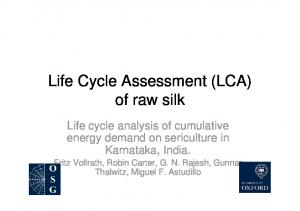 Life Cycle Assessment (LCA) of raw silk