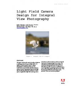 Light Field Camera Design for Integral View Photography