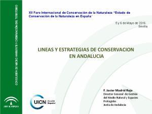 LINEAS Y ESTRATEGIAS DE CONSERVACION EN ANDALUCIA