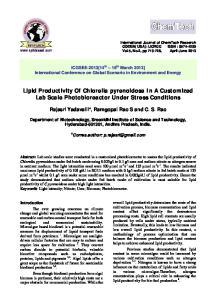 Lipid Productivity Of Chlorella pyrenoidosa In A Customized Lab Scale Photobioreactor Under Stress Conditions