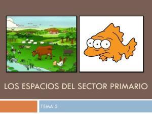 LOS ESPACIOS DEL SECTOR PRIMARIO TEMA 5