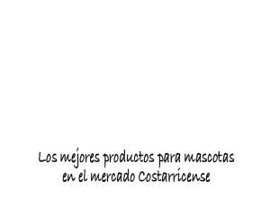 Los mejores productos para mascotas en el mercado Costarricense