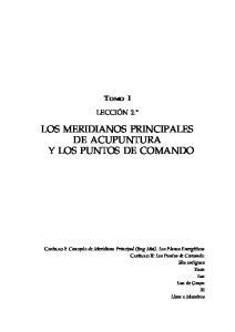 LOS MERIDIANOS PRINCIPALES DE ACUPUNTURA Y LOS PUNTOS DE COMANDO