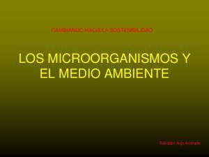 LOS MICROORGANISMOS Y EL MEDIO AMBIENTE