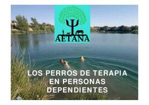 LOS PERROS DE TERAPIA EN PERSONAS DEPENDIENTES