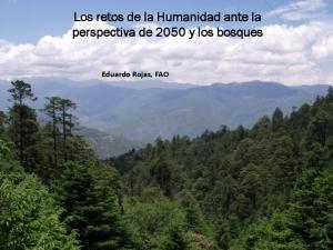 Los retos de la Humanidad ante la perspectiva de 2050 y los bosques