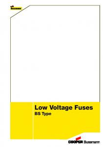 Low Voltage Fuse - BS Type
