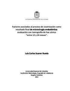 Luis Carlos Suarez Rueda