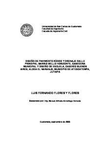 LUIS FERNANDO FLORES Y FLORES