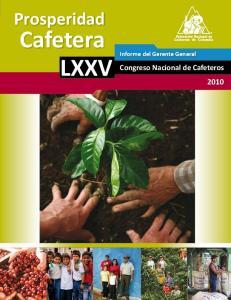 LXXV Informe del Gerente General