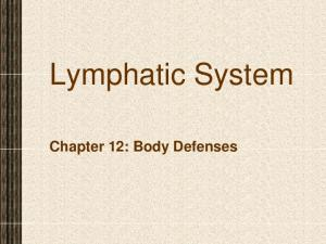 Lymphatic System. Chapter 12: Body Defenses