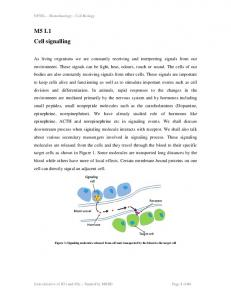 M5 L1 Cell signalling
