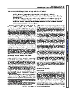 Macromolecule biosynthesis: a key function of sleep