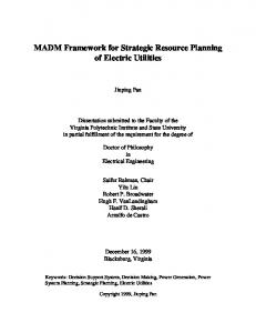 MADM Framework for Strategic Resource Planning of Electric Utilities